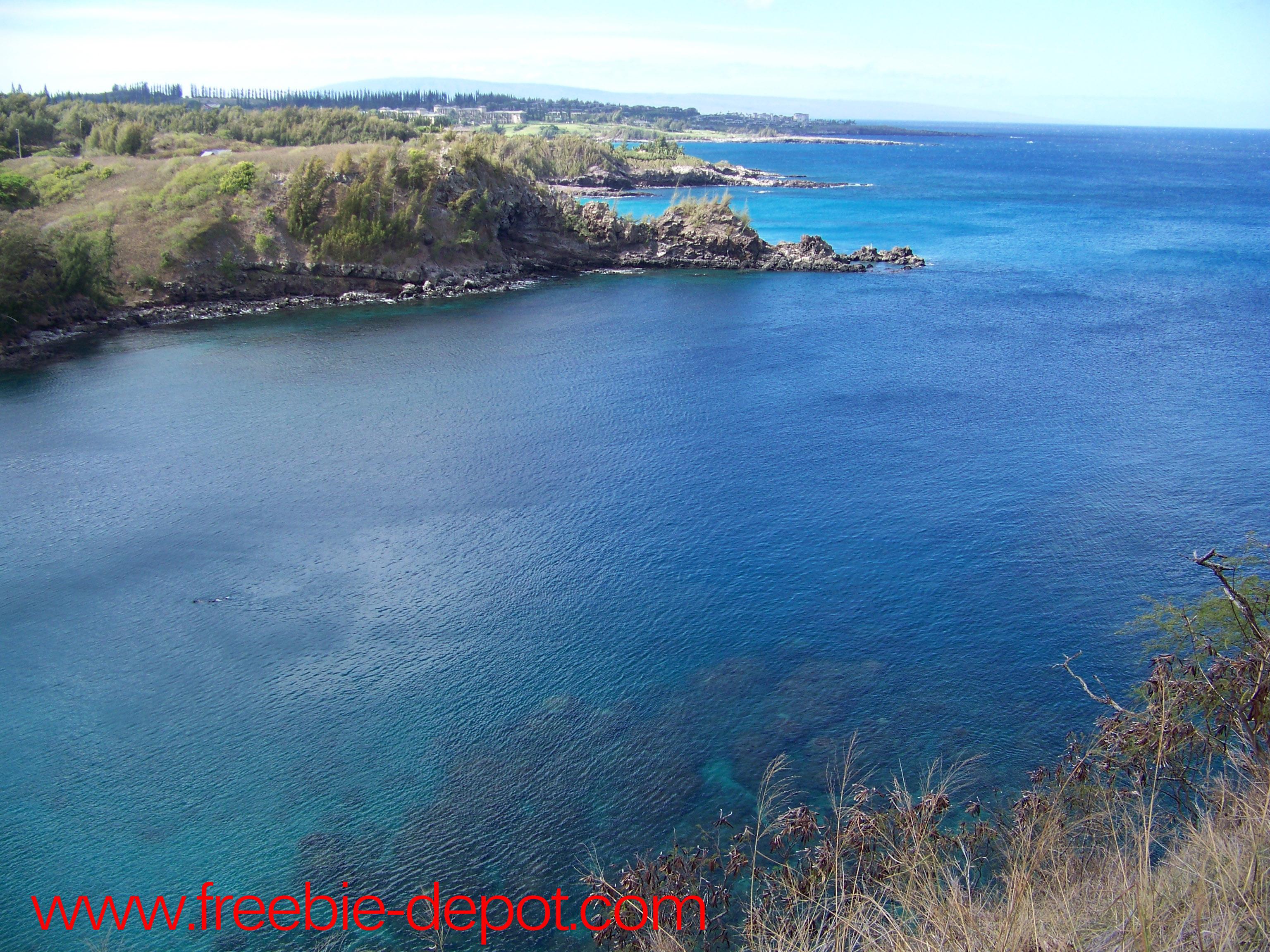 Free Maui Snorkeling